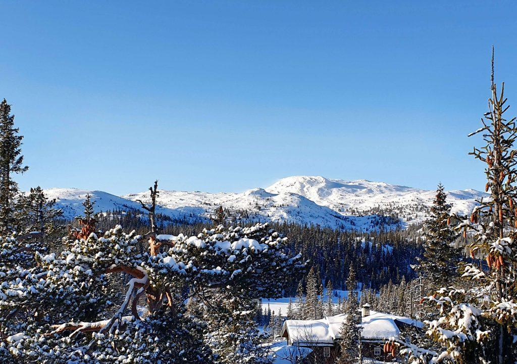 Utsikt mot Hardangervidda