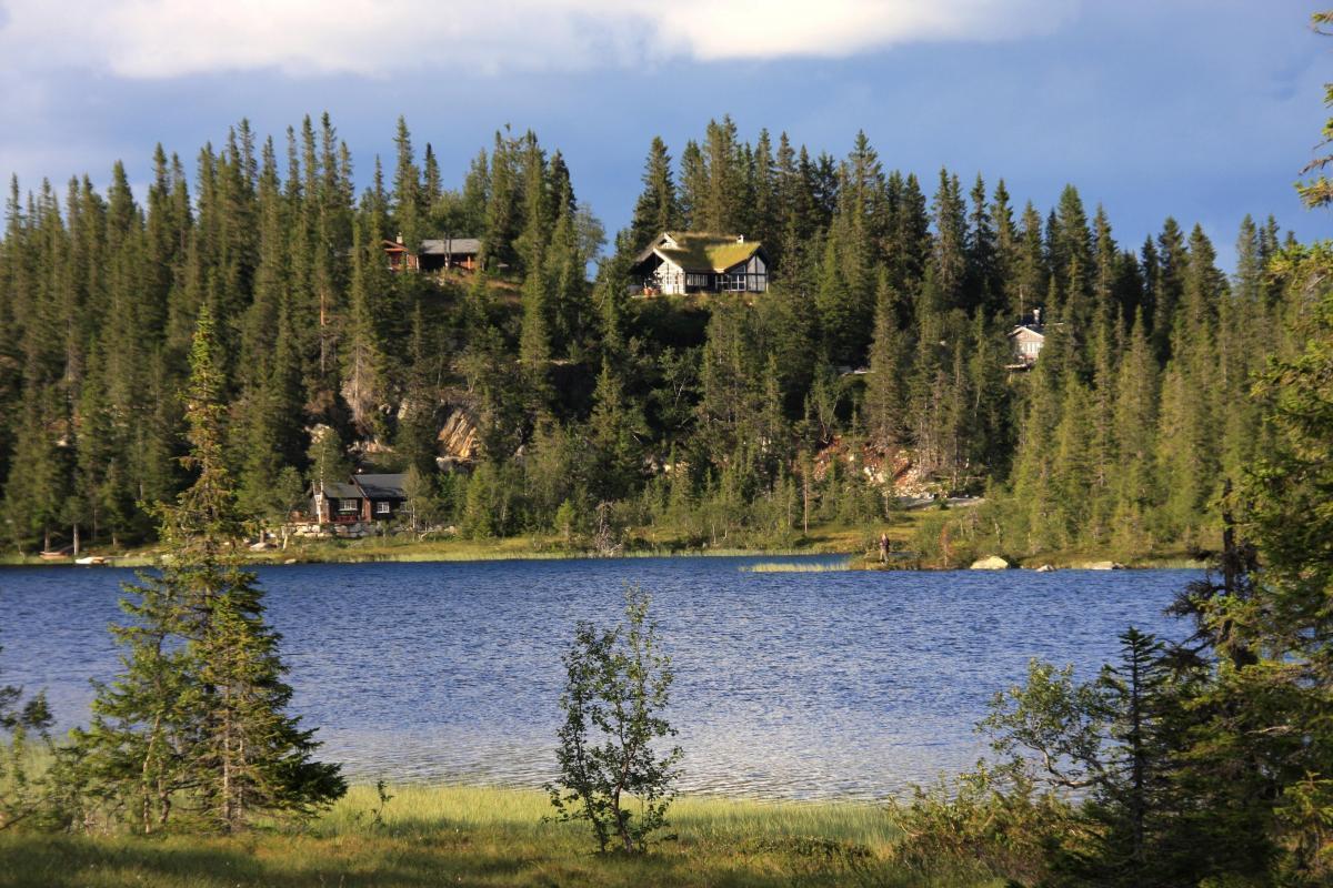 Langevatn Votnedalen (1)